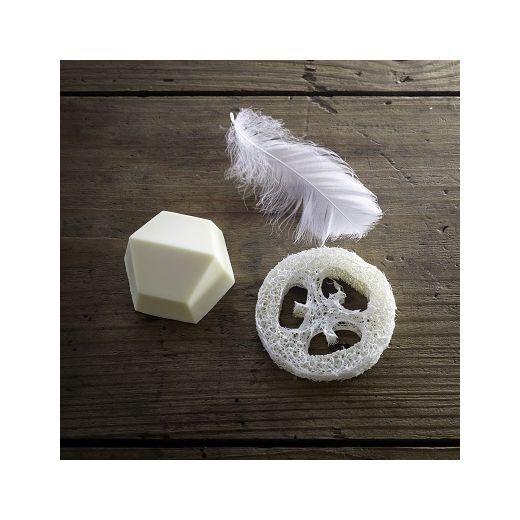 SOLIDU Shampoo Holder   (Kompostējams šampūna turētājs)