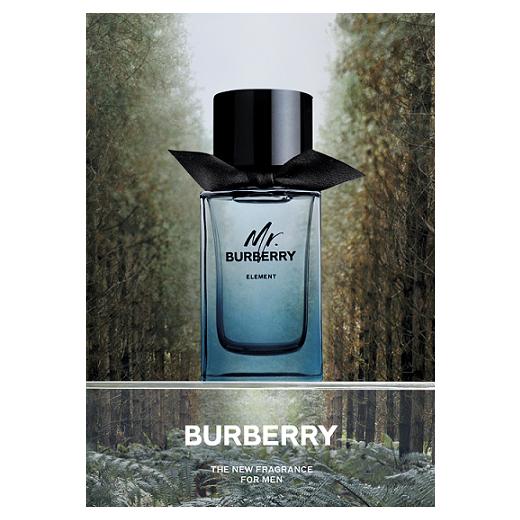 Burberry Mr Burberry Element  (Tualetes ūdens vīrietim)