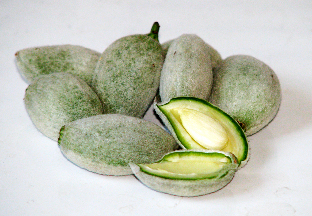 Zaļās mandeles