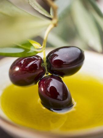 Olīvu skvalāns